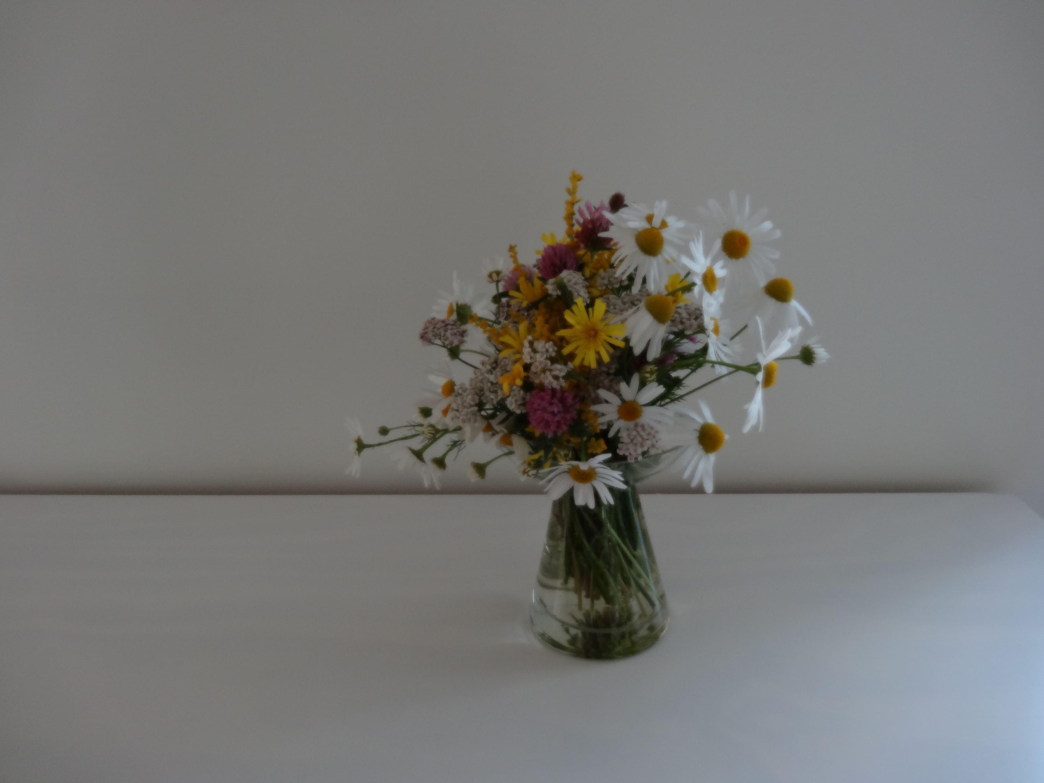 blommor (4)