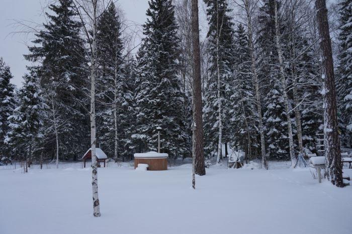 Vinter (5)