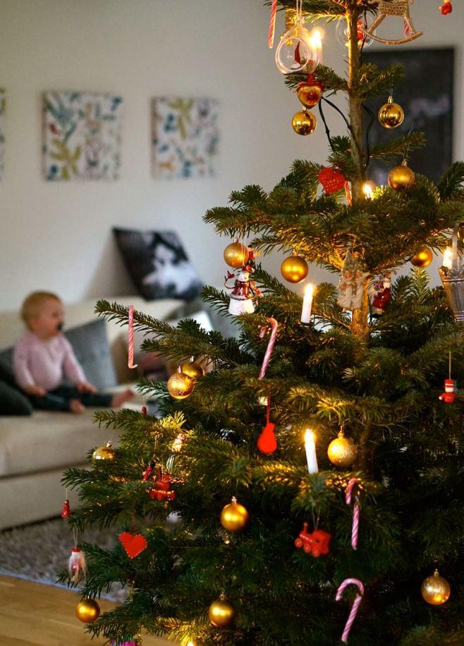 Jullovsdagar gran