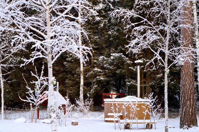 vinter tomten