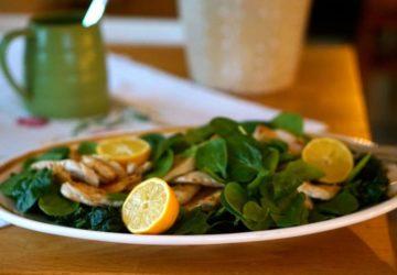 Kycklingschnitzel citron recept