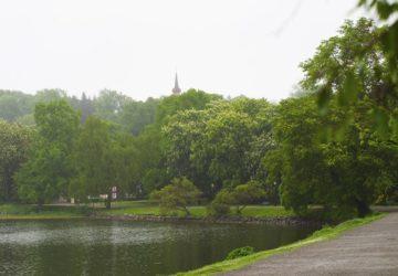 djurgarden-promenad11