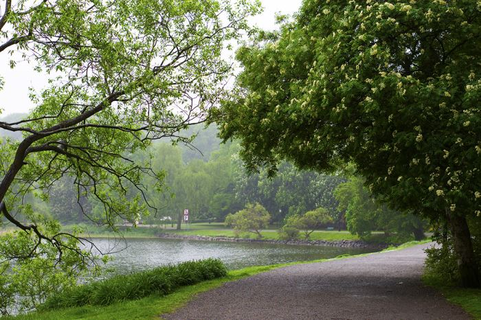djurgarden-promenad13