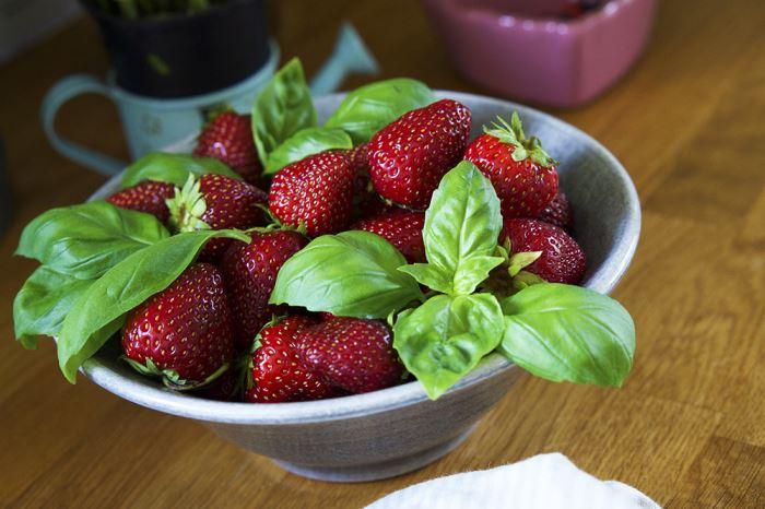 jordgubbar-grillad-halloumi
