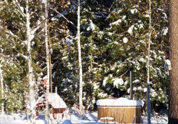 vinterlandsskap-1