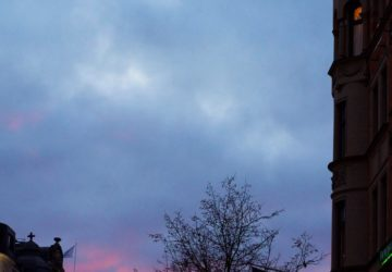 rosa-himmel
