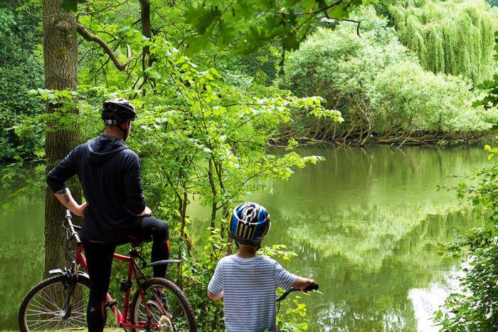 Cykling till en skog och en sjö