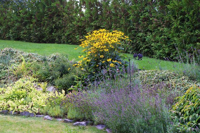 Plantering i trädgården på hösten