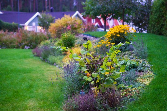 Trädgården på hösten
