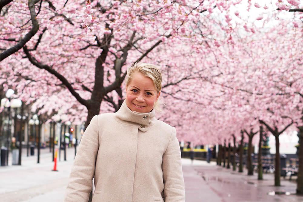 Karin Axelsson Körsbärsträden i Kungsträdgården