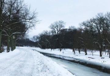 Vinterlöpning på Djurgården
