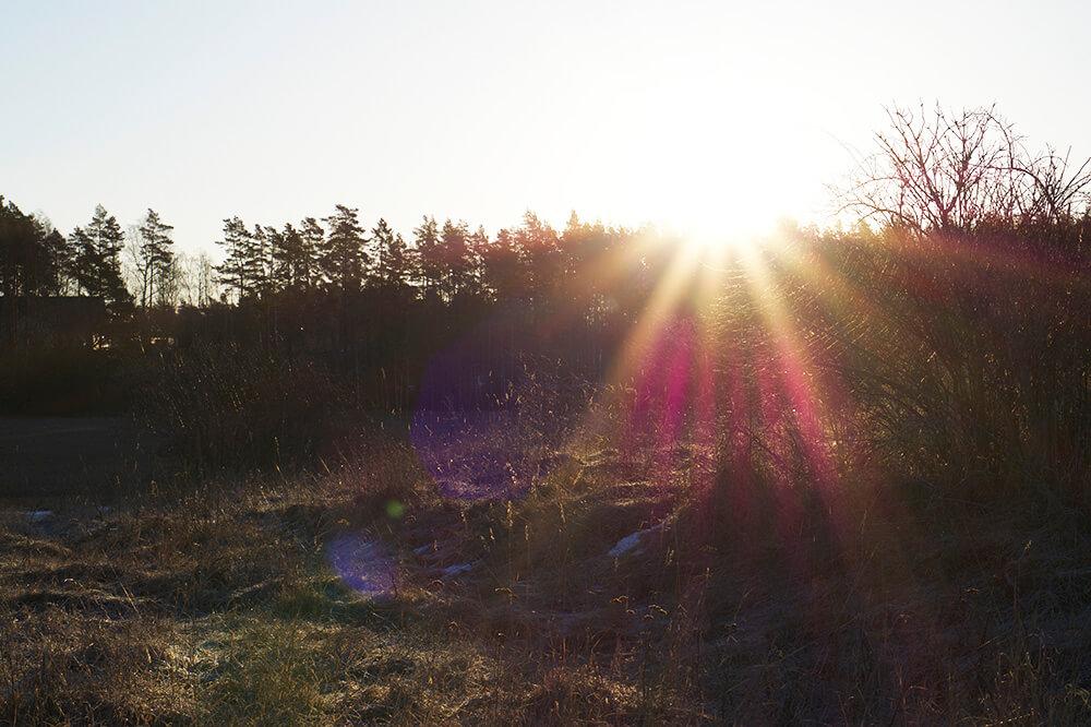 magisk morgon