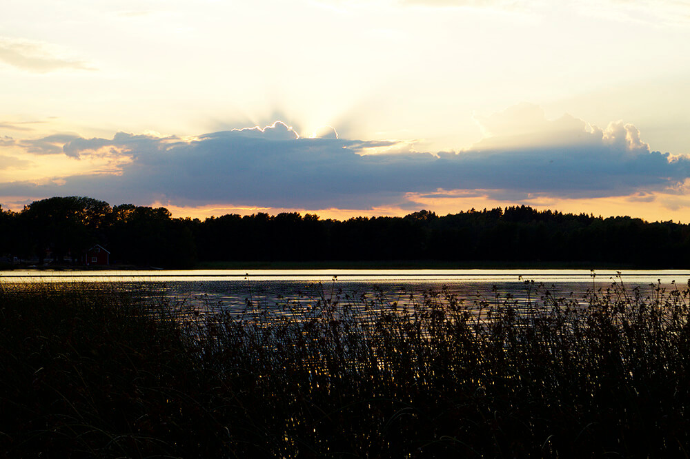 Kvällsdopp i Lejondalssjön