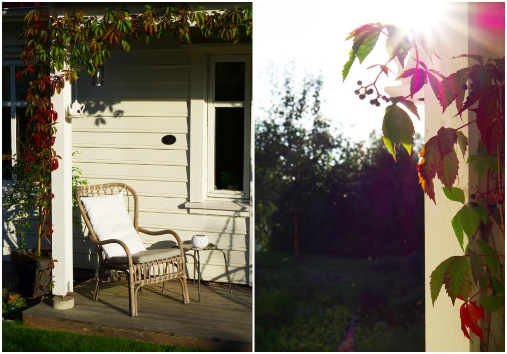 Ljuvlig septemberkväll hemma hos oss