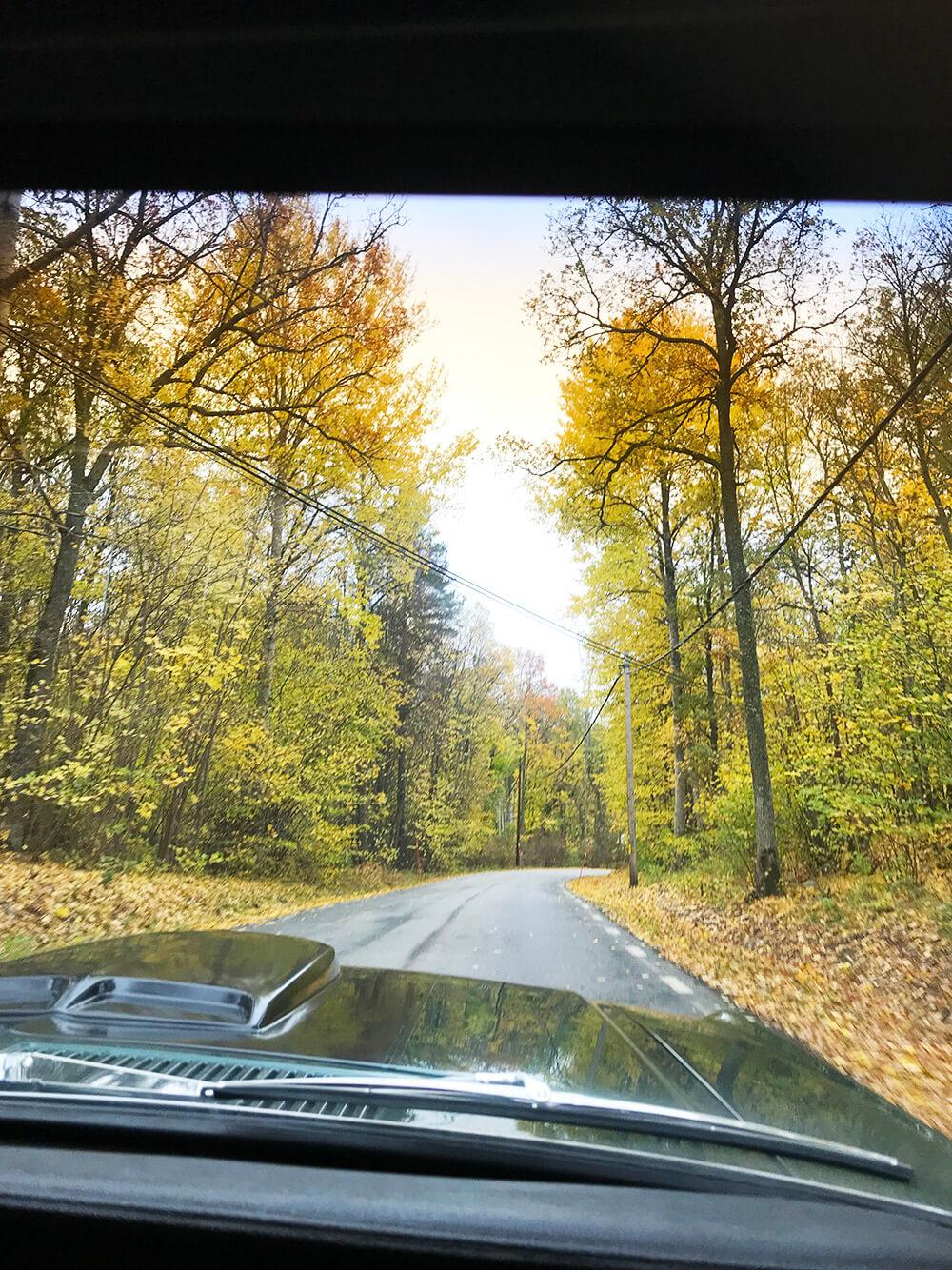 Ford Mustang och en tur på hösten