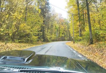 biltur på hösten