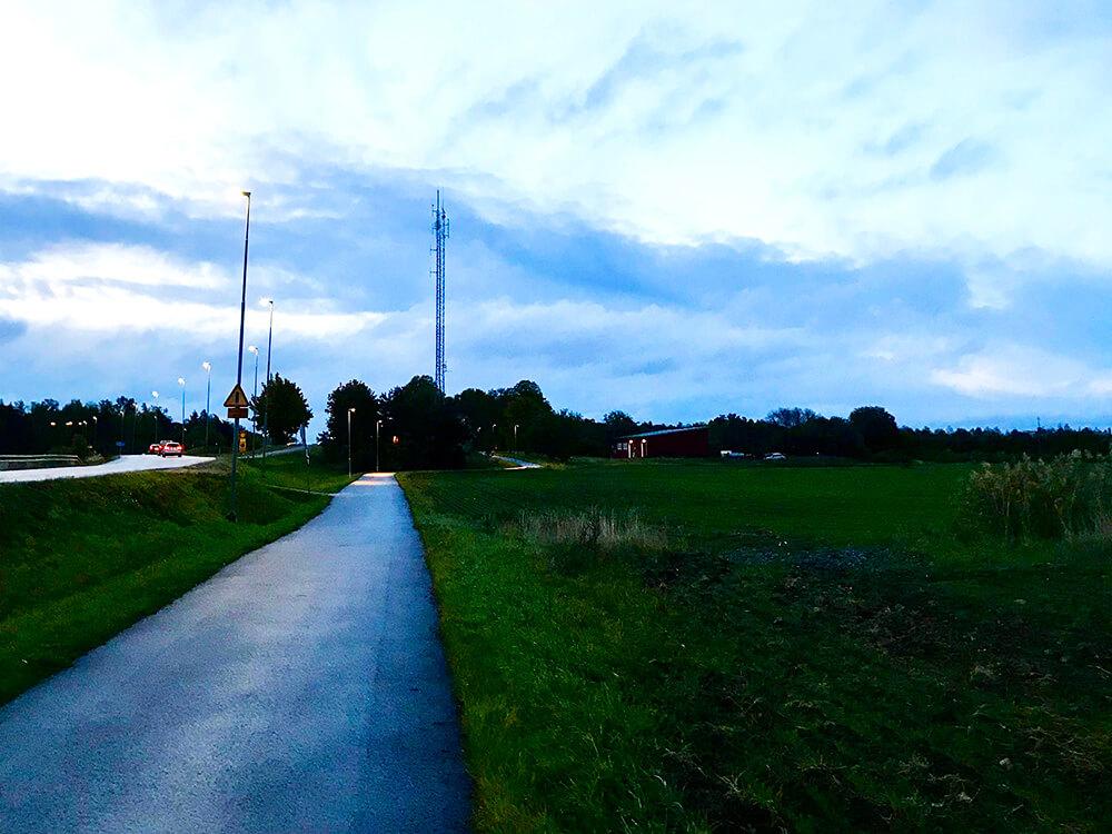morgonlöpning