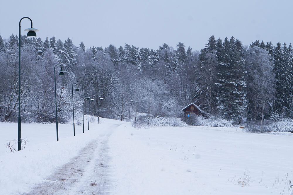 Vinterpromenad