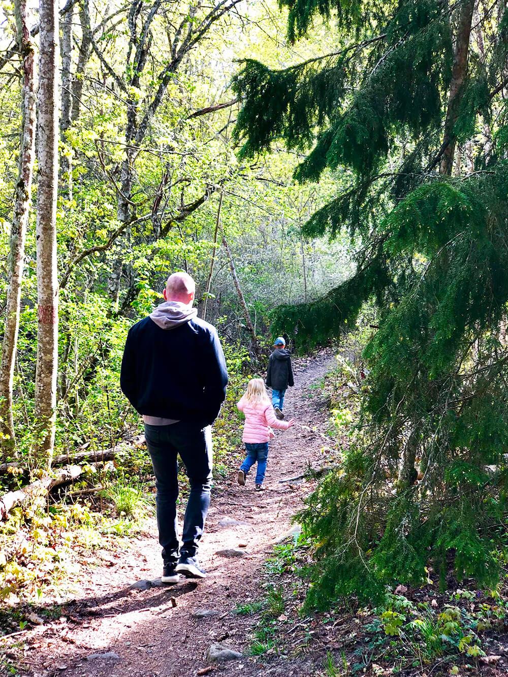 Skogspromenad i Skokloster