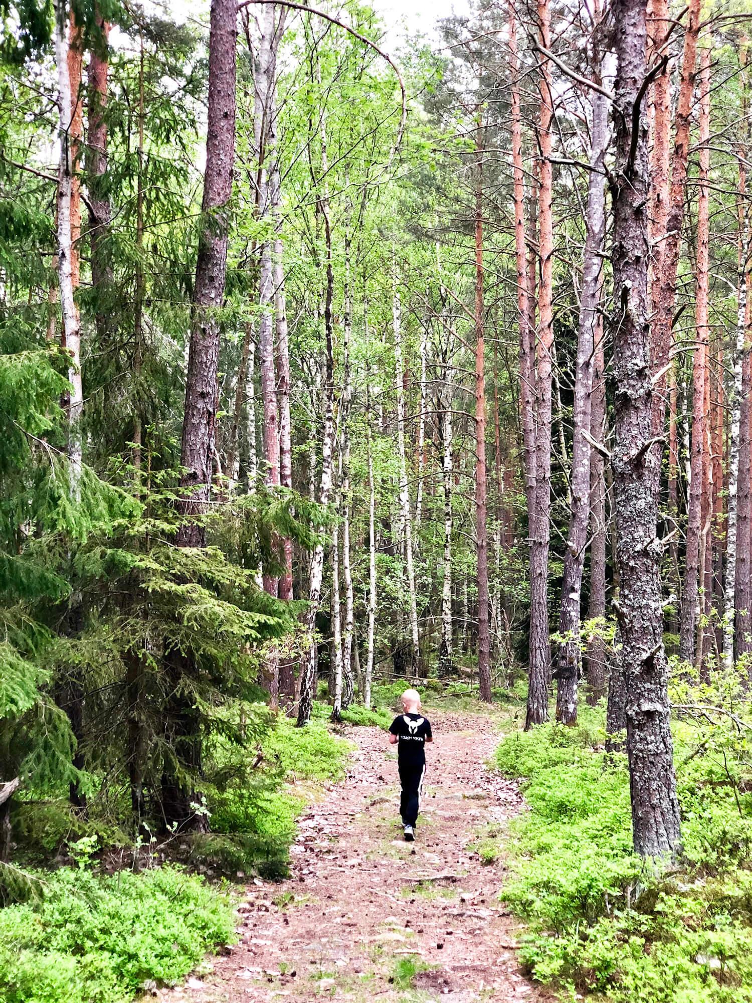Den tuffa träningsveckan - träning i skogen
