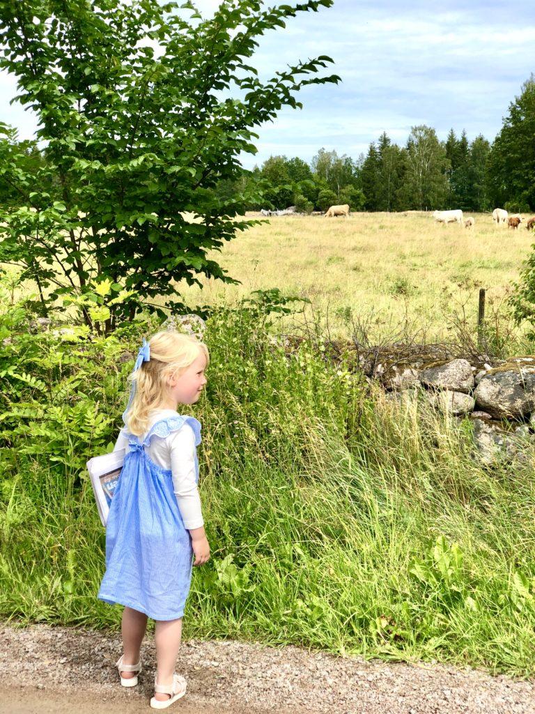 Kohage i Småland