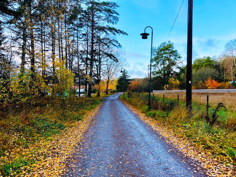 Årets längsta dag - promenad och cykling ute i oktober