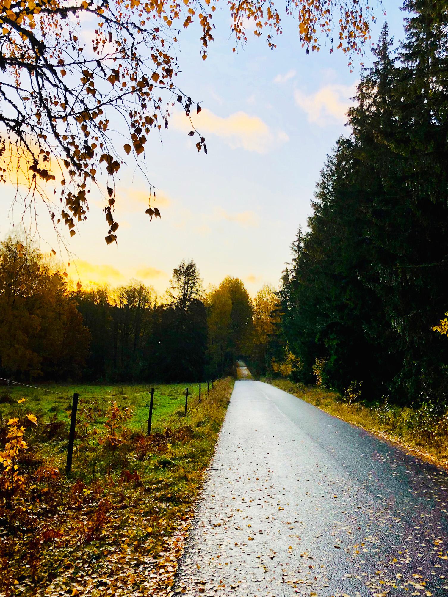 Löpning en lördagsmorgon på hösten
