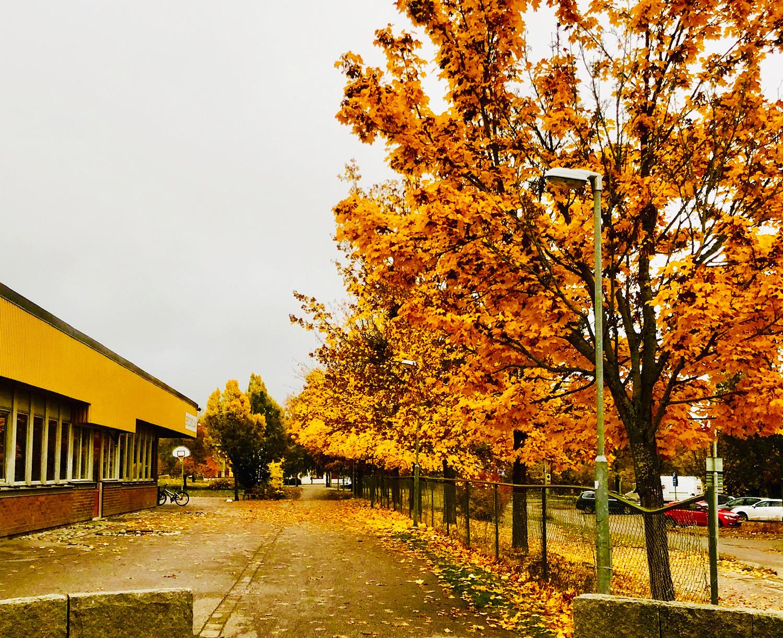 Höst oktober