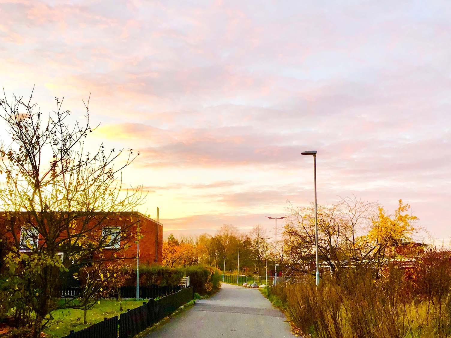 Veckans bästa - morgonpromenad på hösten