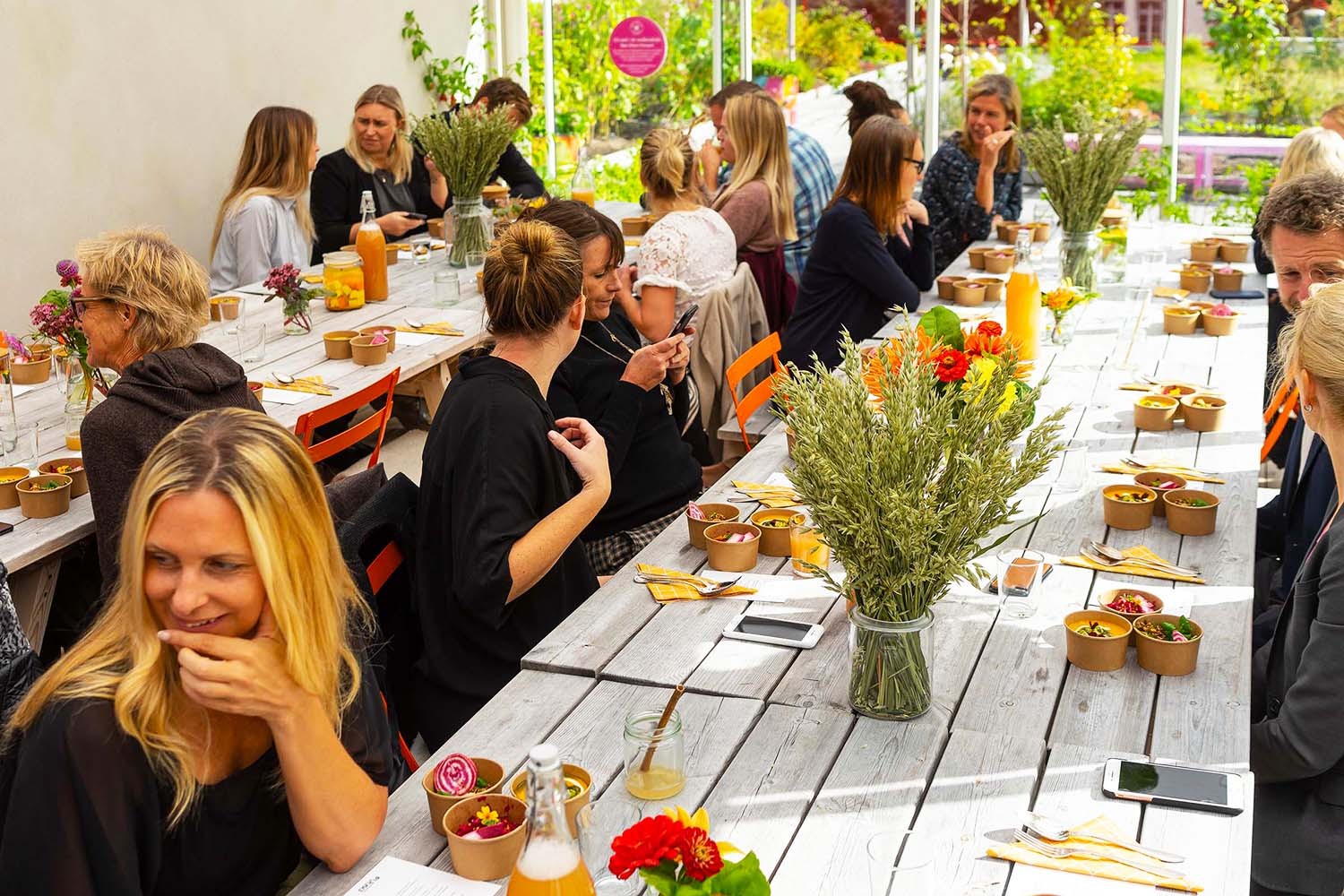 Presslunch med Fazer Yosa Oat och Green Kitchenstories