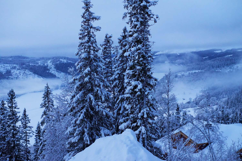 GOD JUL från ett snöigt Åre Björnen