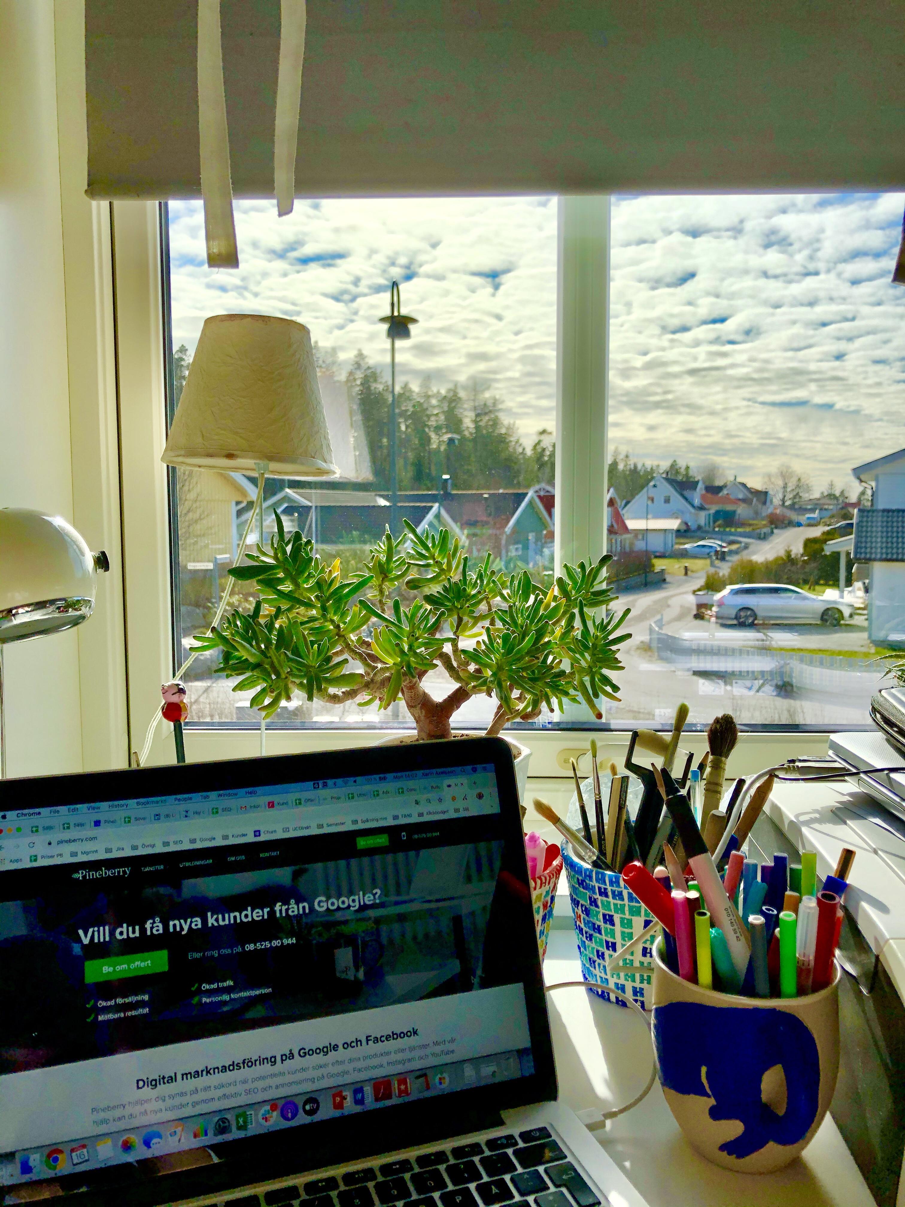Utsikt från mitt hemmakontor