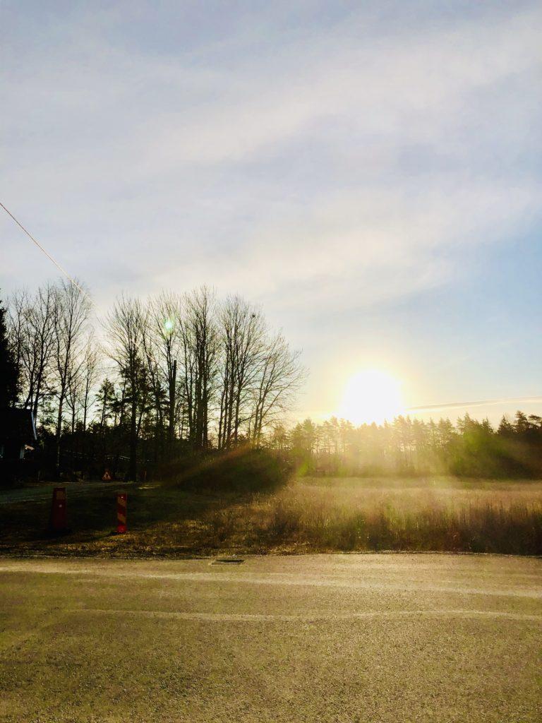 Morgonpromenad i sol