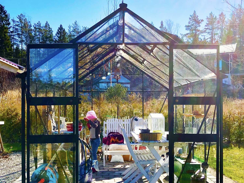 Frösådd i växthuset