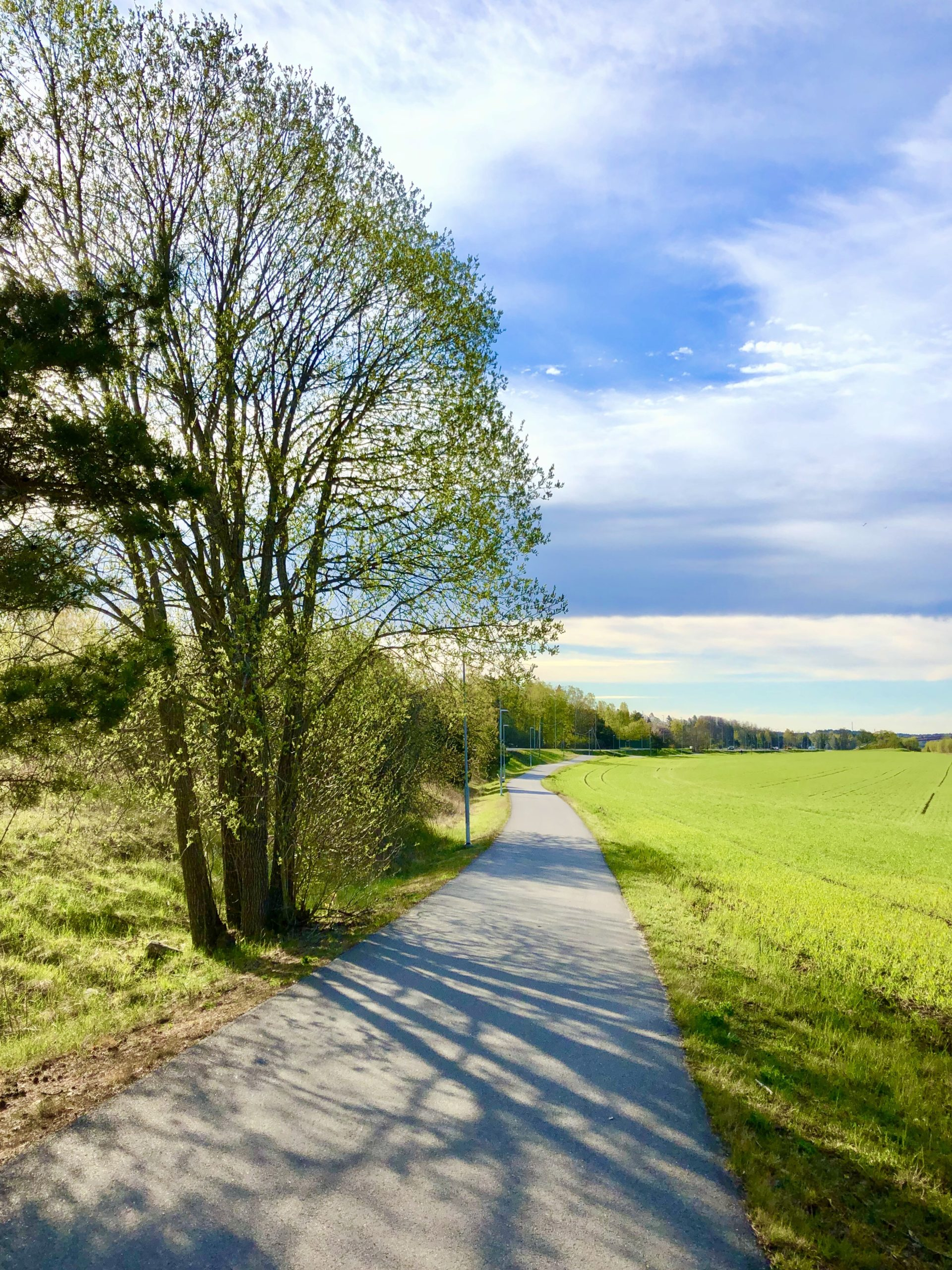 Morgonpromenad i maj