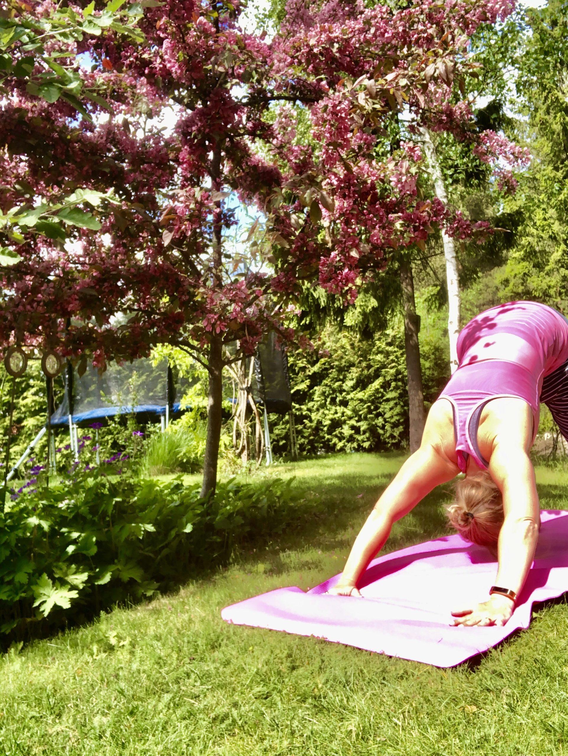 Yoga i trädgården