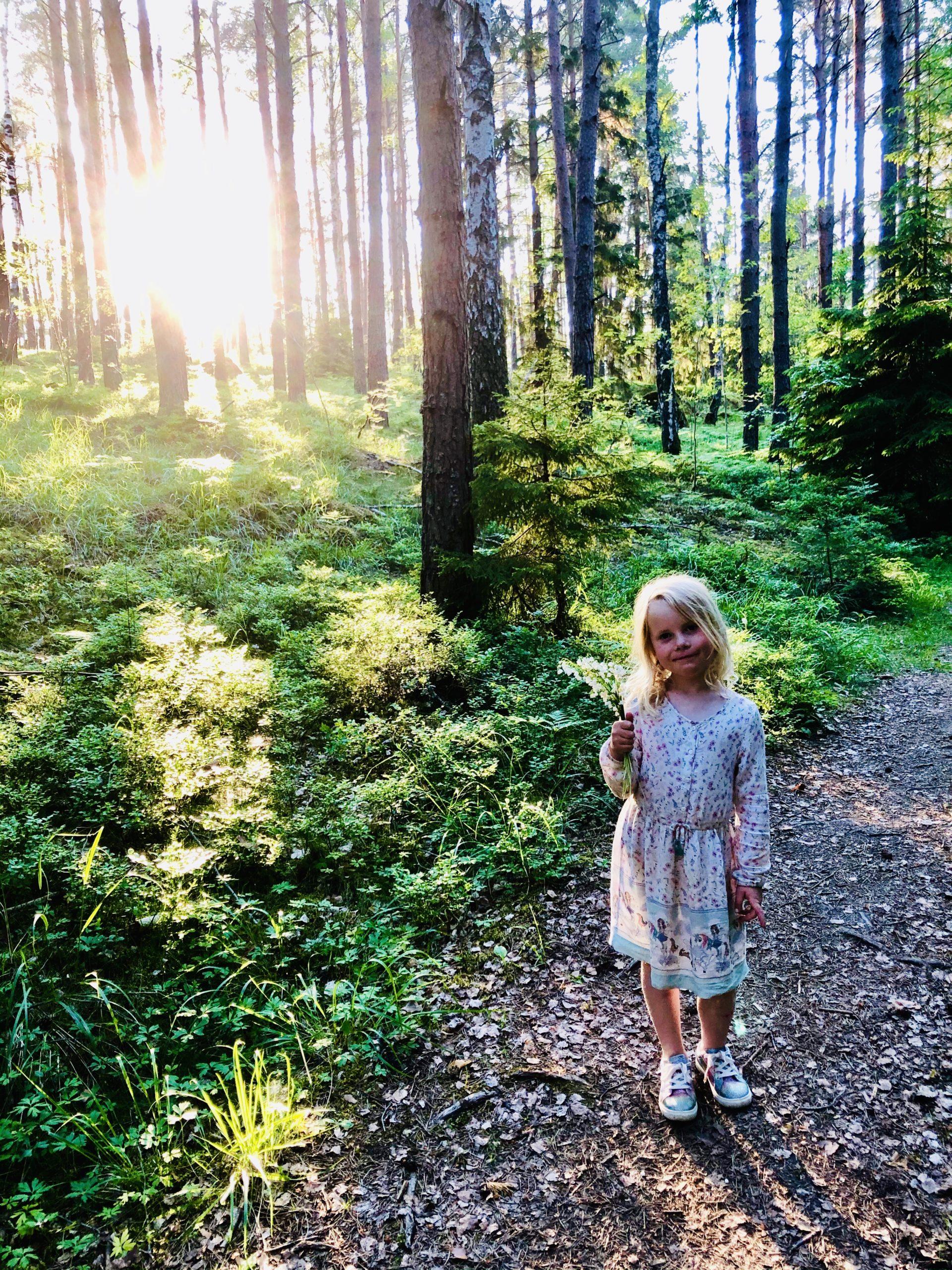 Liljekonvaljplock i skogen