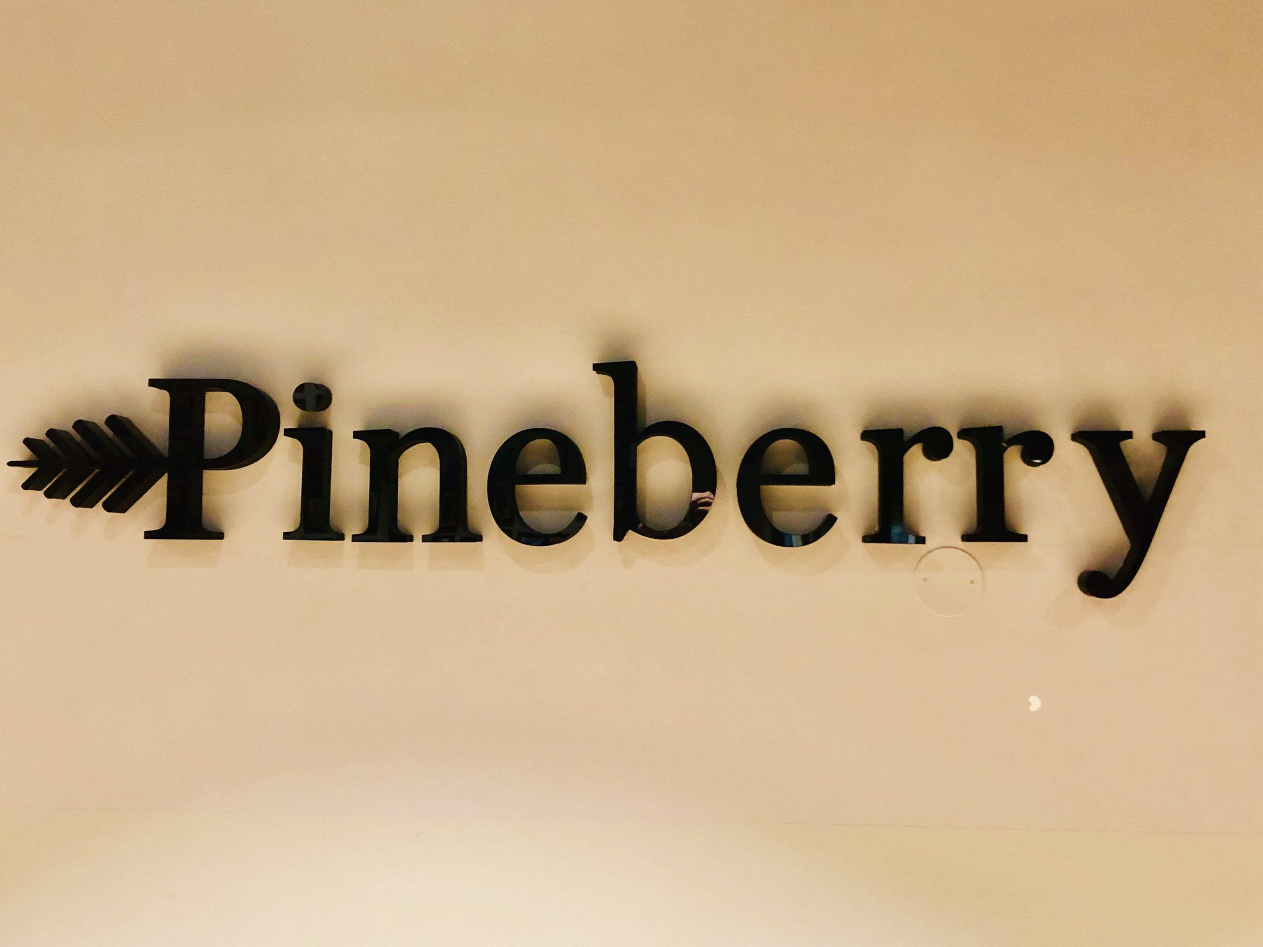 Pineberry kontor