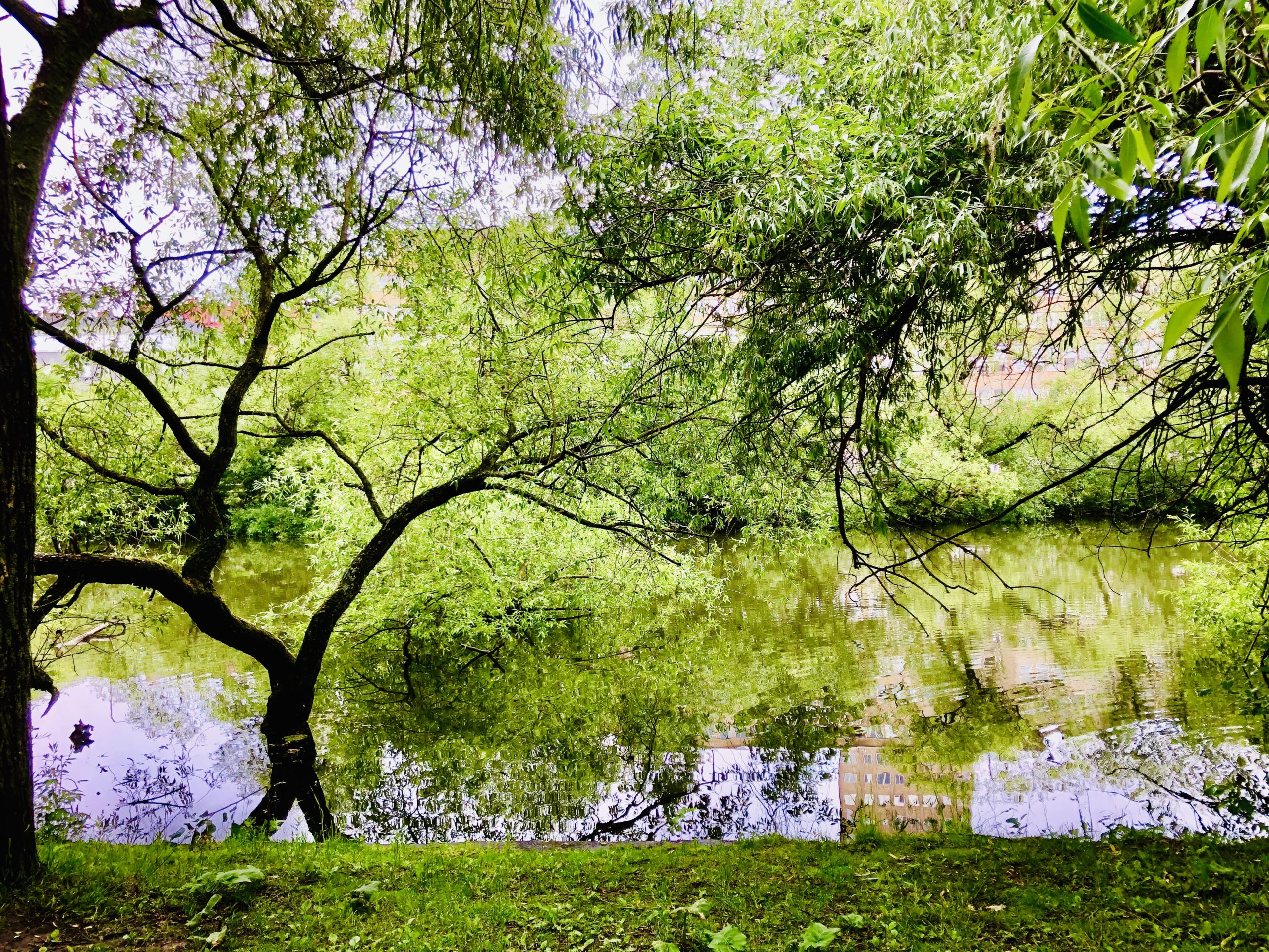 Natur Stockholm