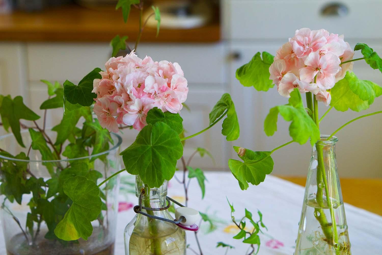 Sommarlov och blommor på den blommiga duken