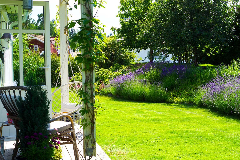 En semesterdag hemma - trädgården