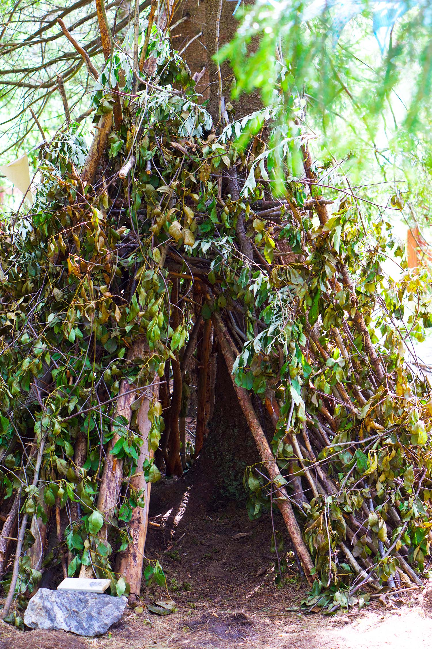 Bygga koja i skogen