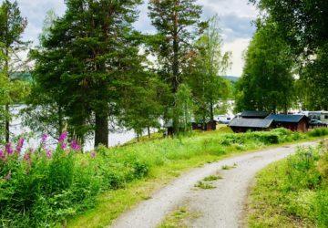 Snibbens Camping Höga Kusten