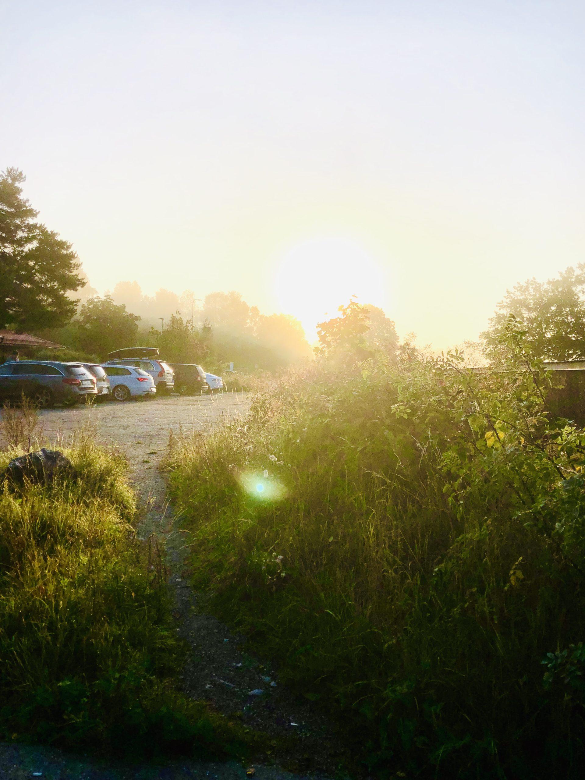 Augusti i morgonsol