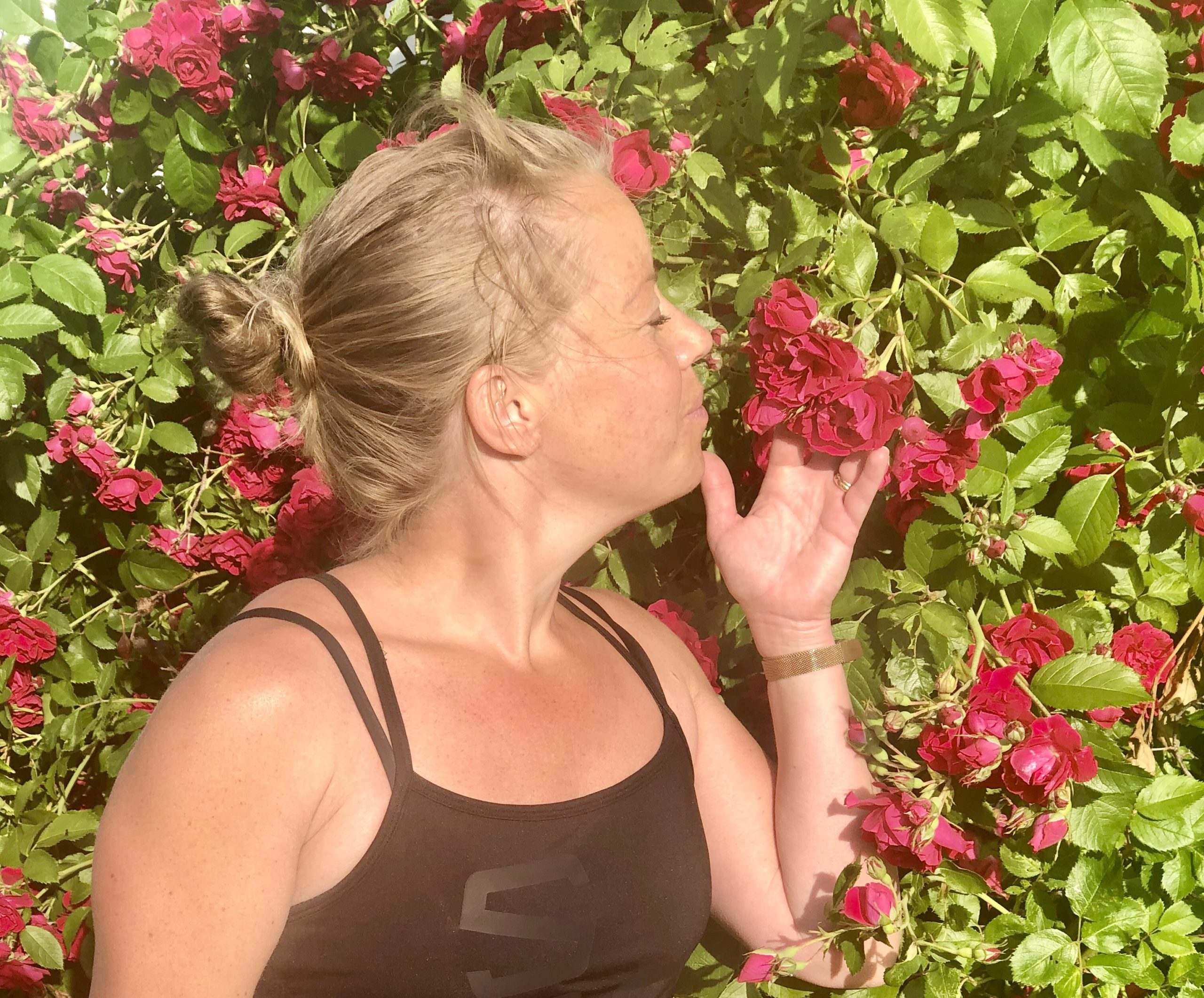 Vackra rosor och fina citat