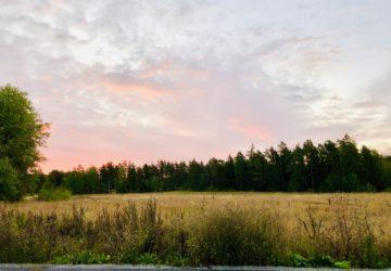 Löpning under en rosa himmel