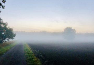 Meditativ löpning på morgonen