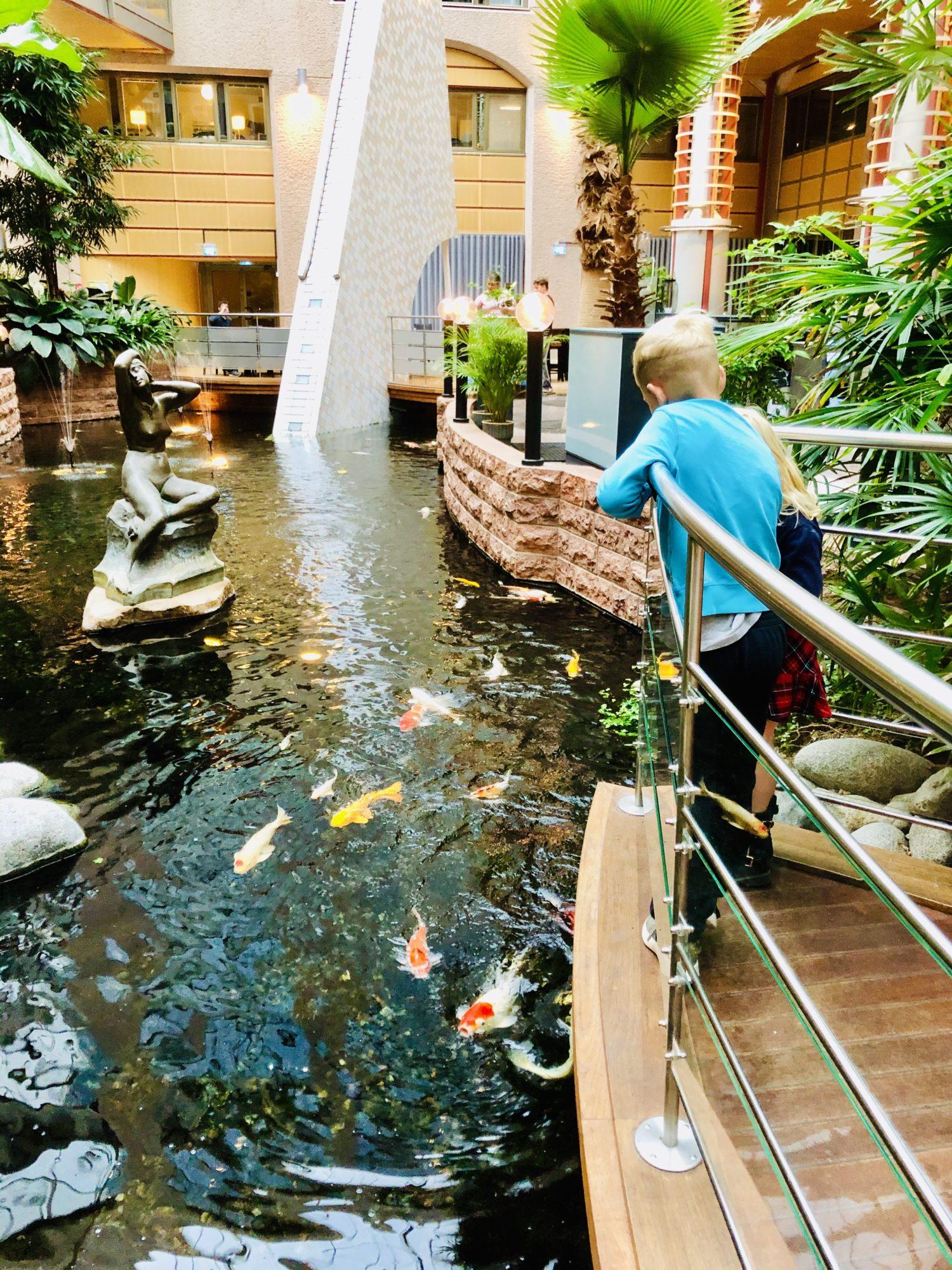 Mata fiskar på hotell