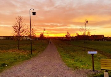 En lantlig väg i solnedgång
