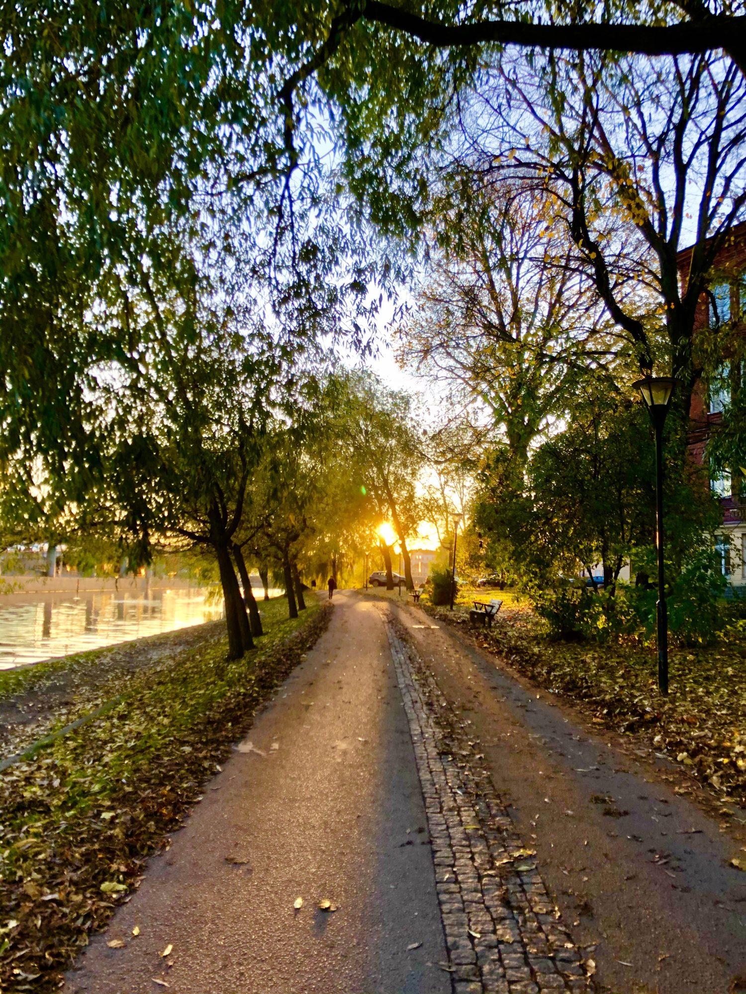 Kungsholmen Runt